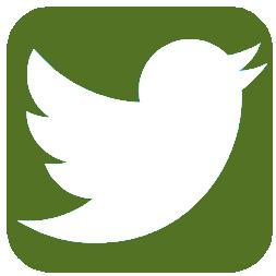 Greene Fire Twitter